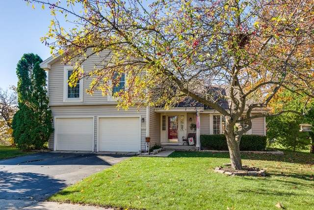 856 Pin Oak Circle, Cary, IL 60013 (MLS #10921862) :: Suburban Life Realty