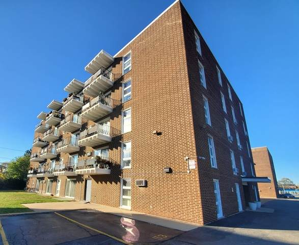 7227 W Higgins Avenue #306, Chicago, IL 60656 (MLS #10922203) :: Littlefield Group