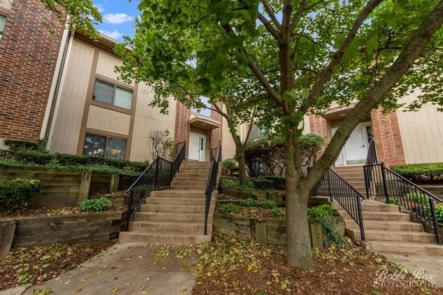 375 Wilmington Drive A, Bartlett, IL 60103 (MLS #10922208) :: Suburban Life Realty