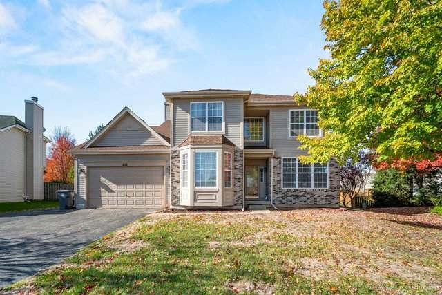 253 Hampton Road, Sugar Grove, IL 60554 (MLS #10922638) :: Janet Jurich