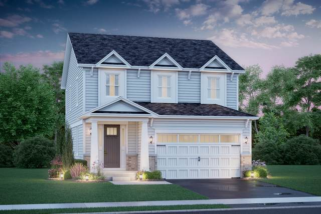 9 Potter Court, Hawthorn Woods, IL 60047 (MLS #10922927) :: Schoon Family Group