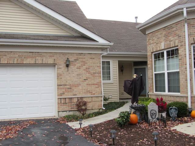 21536 Papoose Lake Court #21536, Crest Hill, IL 60403 (MLS #10923607) :: Schoon Family Group