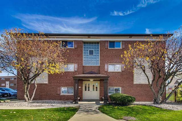 2521 Thatcher Avenue 1J, River Grove, IL 60171 (MLS #10923797) :: BN Homes Group