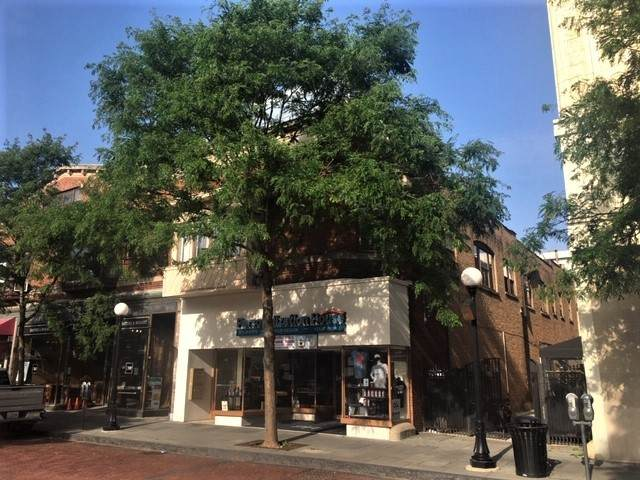 127 Marion Street - Photo 1