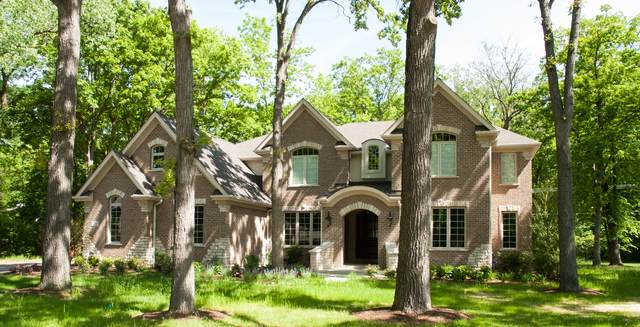 1146 Steeple View Drive, Long Grove, IL 60047 (MLS #10924134) :: BN Homes Group