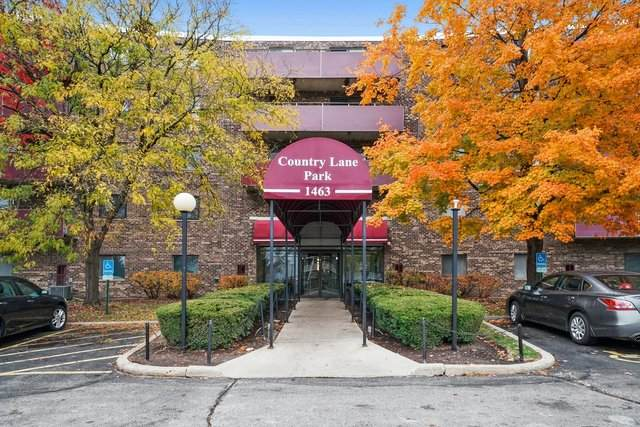 1463 Mercury Drive #203, Schaumburg, IL 60193 (MLS #10924753) :: The Wexler Group at Keller Williams Preferred Realty