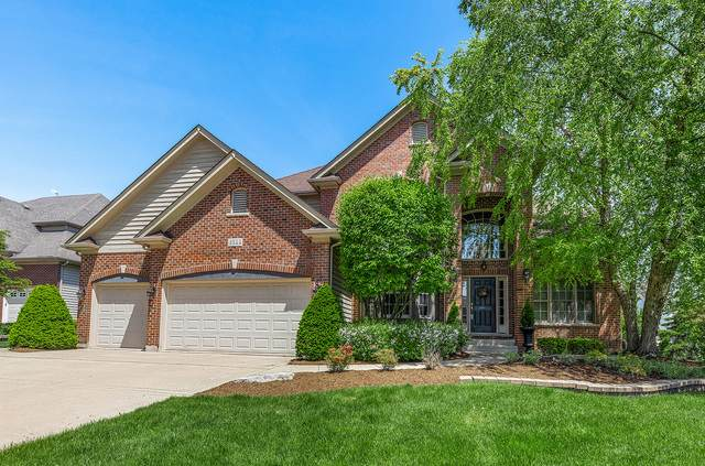 3544 Stackinghay Drive, Naperville, IL 60564 (MLS #10924808) :: John Lyons Real Estate