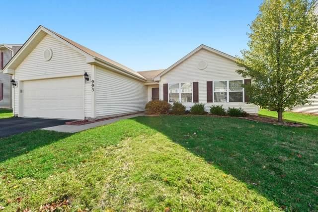 993 Richard Brown Boulevard, Volo, IL 60073 (MLS #10924966) :: Helen Oliveri Real Estate