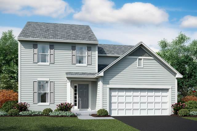 26417 W Wild Rose Lot #538 Drive, Channahon, IL 60410 (MLS #10925107) :: Schoon Family Group