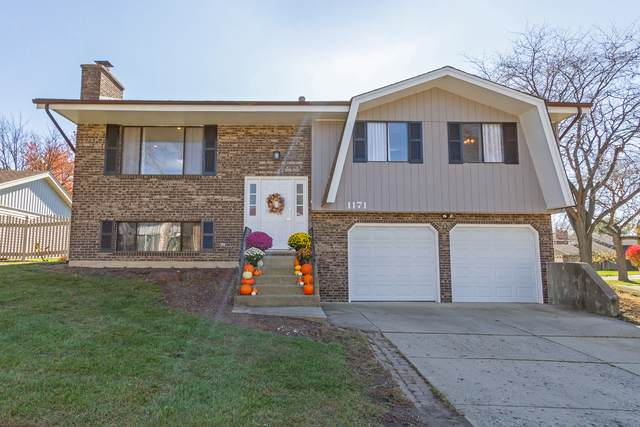 1171 Saylesville Lane, Schaumburg, IL 60193 (MLS #10925136) :: BN Homes Group