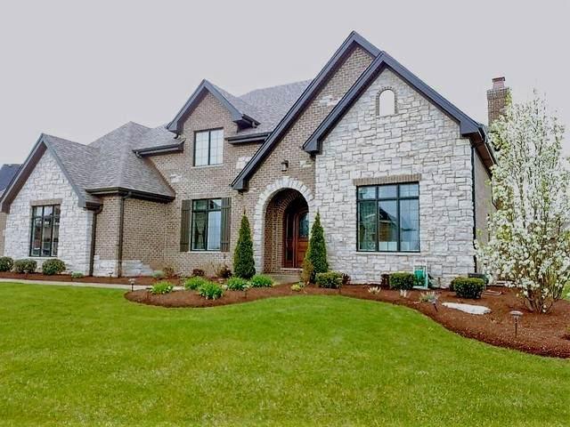 11543 Torino Way, Frankfort, IL 60423 (MLS #10925392) :: John Lyons Real Estate