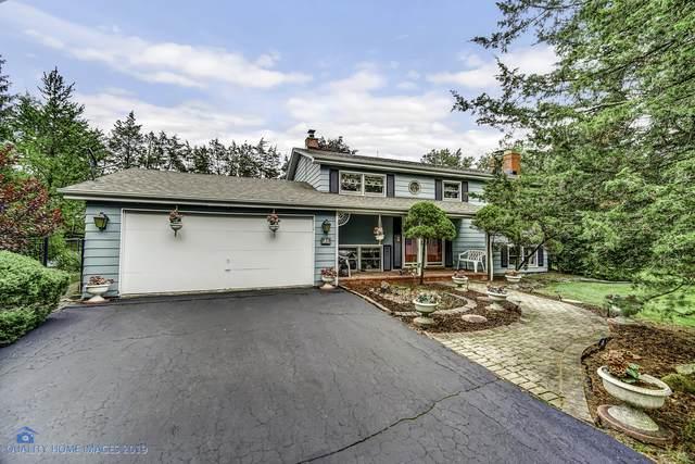 12757 W 159th Street, Homer Glen, IL 60491 (MLS #10925431) :: Lewke Partners