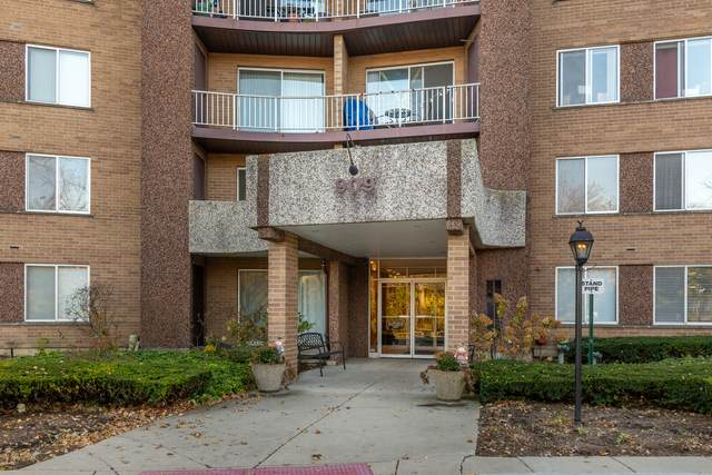 909 E Kenilworth Avenue #225, Palatine, IL 60074 (MLS #10925520) :: BN Homes Group