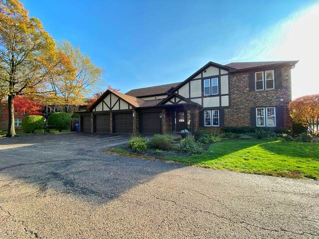 173 Grove Avenue D, Des Plaines, IL 60016 (MLS #10925648) :: Lewke Partners