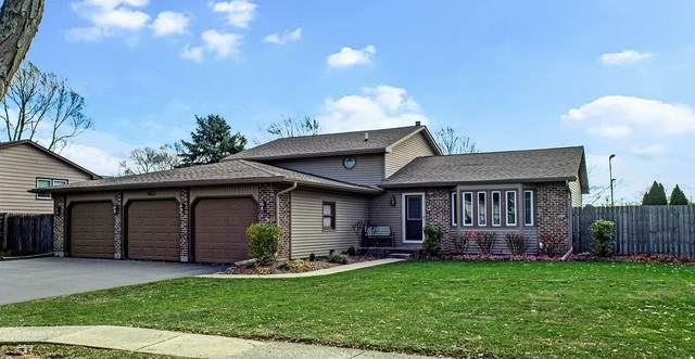 4431 Raven Court, Gurnee, IL 60031 (MLS #10925787) :: Schoon Family Group