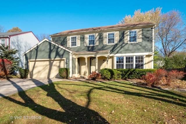 210 Annapolis Drive, Vernon Hills, IL 60061 (MLS #10926072) :: Suburban Life Realty