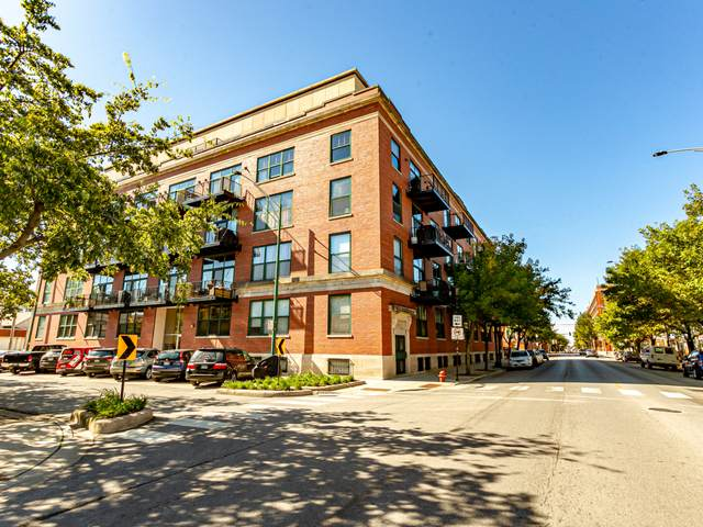 3500 S Sangamon Street #303, Chicago, IL 60609 (MLS #10926560) :: The Wexler Group at Keller Williams Preferred Realty