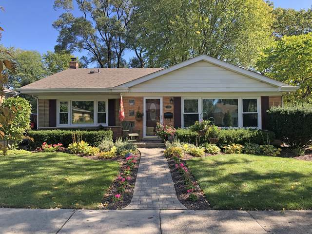 221 S Princeton Avenue, Arlington Heights, IL 60005 (MLS #10926674) :: Littlefield Group