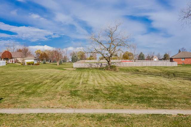 21152 Wooded Cove Drive, Elwood, IL 60421 (MLS #10926924) :: Suburban Life Realty