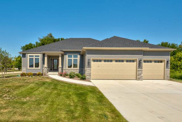 389 Andover Drive, Oswego, IL 60543 (MLS #10927120) :: Littlefield Group