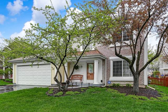 1736 Chalmette Court, Naperville, IL 60565 (MLS #10927167) :: Littlefield Group