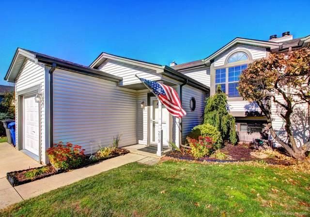 219 Meadows Drive, Sugar Grove, IL 60554 (MLS #10927233) :: Lewke Partners
