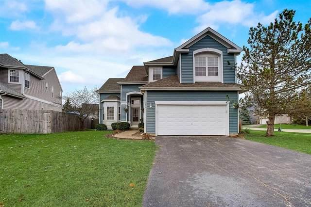 1073 Cottonwood Court, Round Lake, IL 60073 (MLS #10927234) :: BN Homes Group