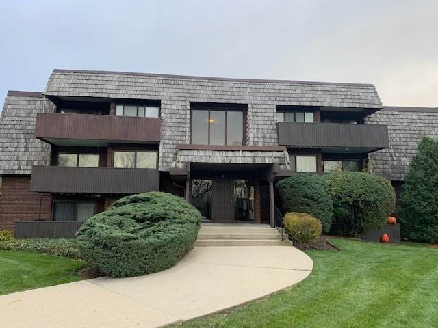 491 Timber Ridge Drive 202A, Carol Stream, IL 60188 (MLS #10927556) :: Helen Oliveri Real Estate