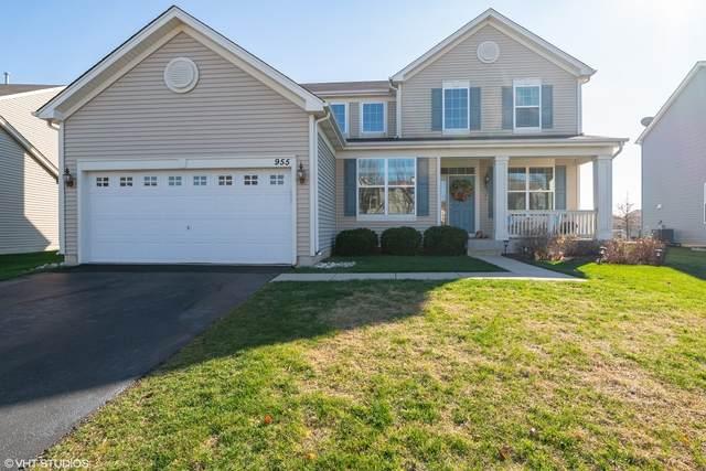 955 Great Falls Drive, Volo, IL 60073 (MLS #10927846) :: Helen Oliveri Real Estate