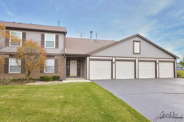 231 Brett Circle D, Wauconda, IL 60084 (MLS #10928170) :: Helen Oliveri Real Estate