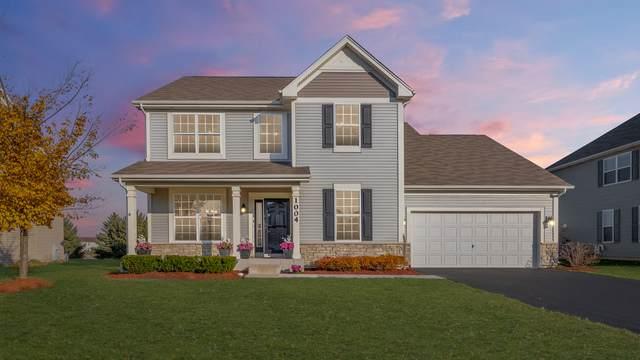 1004 Hudson Drive, Joliet, IL 60431 (MLS #10928338) :: Helen Oliveri Real Estate