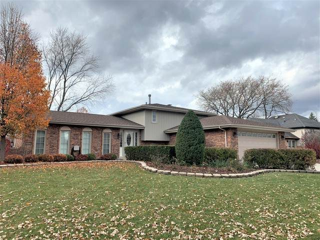 14042 William Drive, Orland Park, IL 60462 (MLS #10929404) :: John Lyons Real Estate