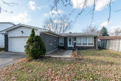3508 Lorene Court, Waukegan, IL 60087 (MLS #10930126) :: Jacqui Miller Homes