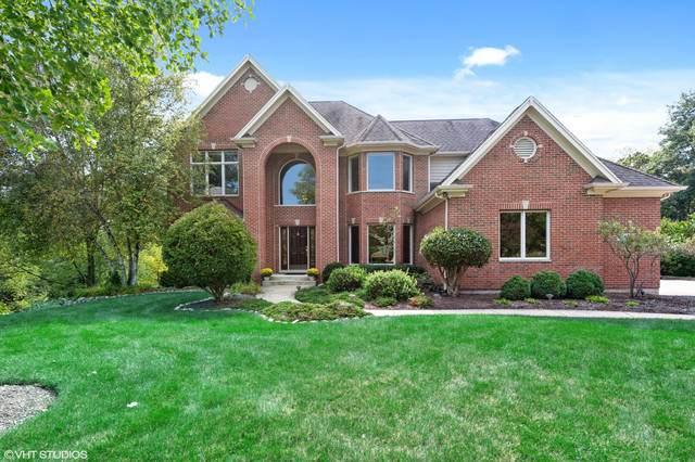 3262 Black Cherry Circle, Carpentersville, IL 60110 (MLS #10930291) :: Jacqui Miller Homes