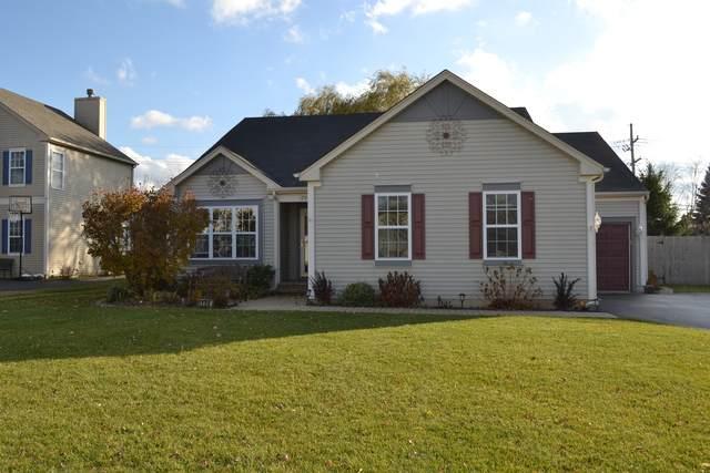 1206 Water Stone Circle, Wauconda, IL 60084 (MLS #10930703) :: Helen Oliveri Real Estate