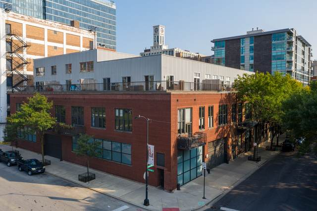 203 S Sangamon Street #313, Chicago, IL 60607 (MLS #10930728) :: Property Consultants Realty