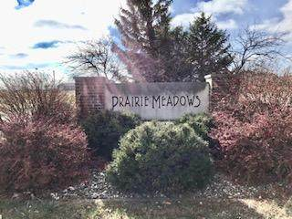 Lot 20, 19,22 Prairie Meadows Drive, HEYWORTH, IL 61745 (MLS #10930854) :: Janet Jurich