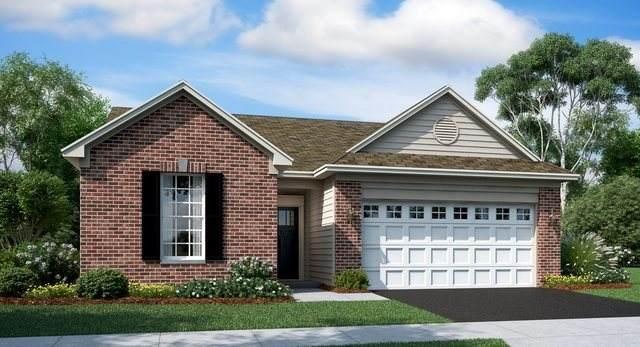 2161 Magenta Lane, Algonquin, IL 60102 (MLS #10930894) :: BN Homes Group