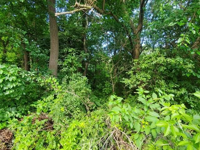Lot 14 North Shore Drive, Oakwood Hills, IL 60013 (MLS #10931359) :: John Lyons Real Estate