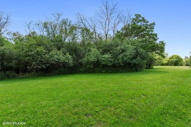 1017 Birchwood Road, Oak Brook, IL 60523 (MLS #10931795) :: John Lyons Real Estate