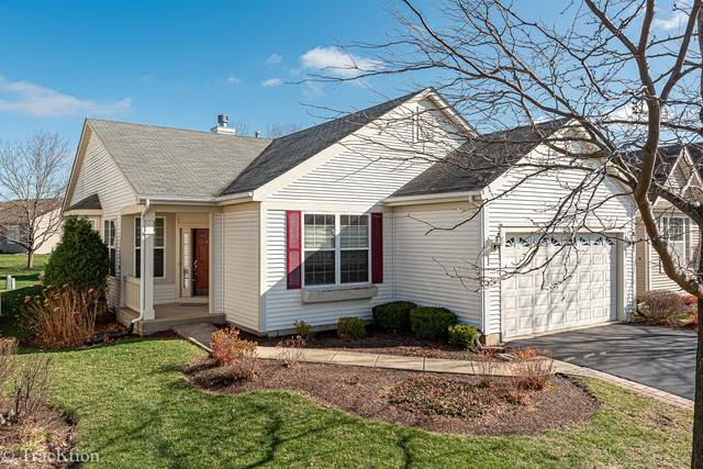21254 Lily Lake Lane, Crest Hill, IL 60403 (MLS #10931873) :: Schoon Family Group