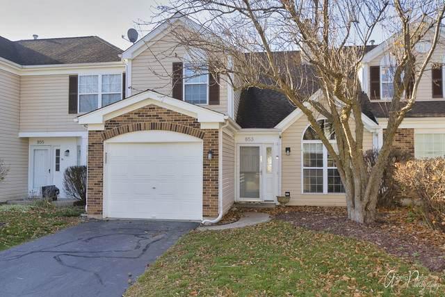 853 W Saratoga Circle, Island Lake, IL 60042 (MLS #10932046) :: BN Homes Group
