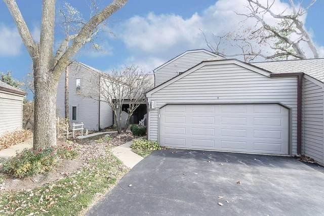 723B Shoreline Drive 723B, Lake Barrington, IL 60010 (MLS #10932067) :: Lewke Partners