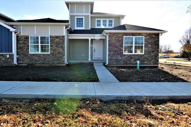 25257 W St Elizabeth Drive, Channahon, IL 60410 (MLS #10932088) :: BN Homes Group