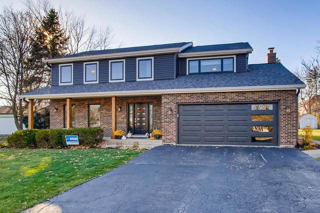 1490 Indian Hill Drive, Schaumburg, IL 60193 (MLS #10932175) :: BN Homes Group