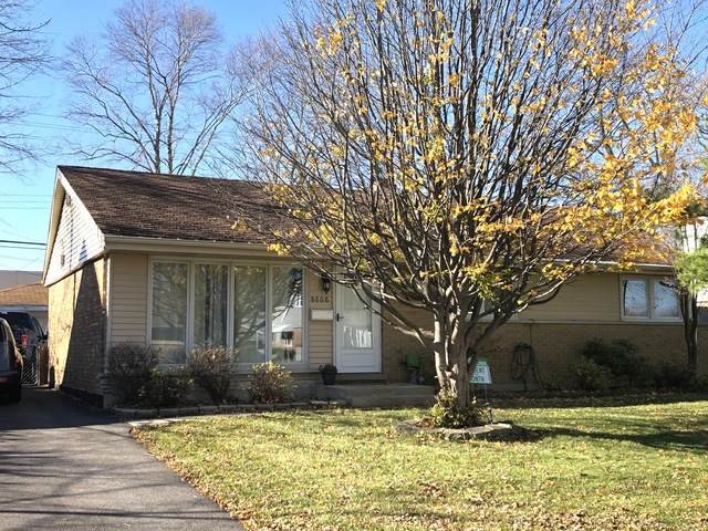 8808 Olympic Drive, Bridgeview, IL 60455 (MLS #10932285) :: Helen Oliveri Real Estate