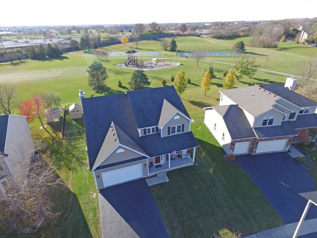 292 Greenview Drive, Crystal Lake, IL 60014 (MLS #10932311) :: Littlefield Group