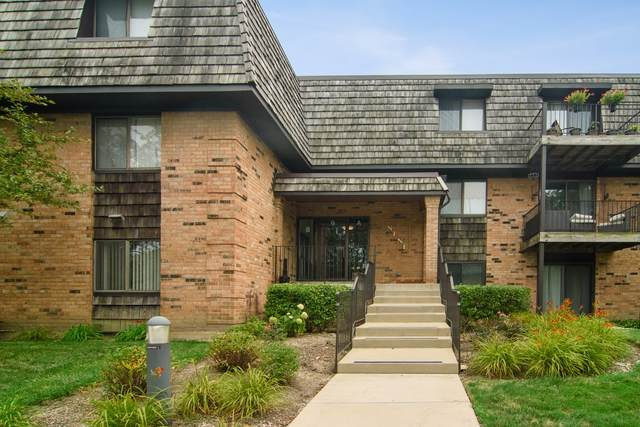 9 Oak Creek Drive #1902, Buffalo Grove, IL 60089 (MLS #10932831) :: Lewke Partners