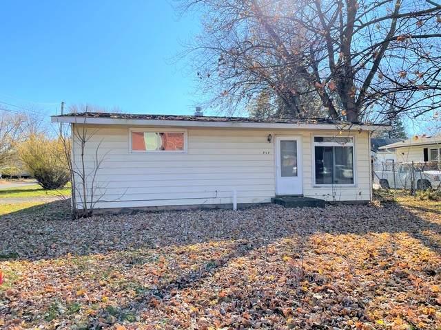 717 W South Street, Plano, IL 60545 (MLS #10932889) :: John Lyons Real Estate
