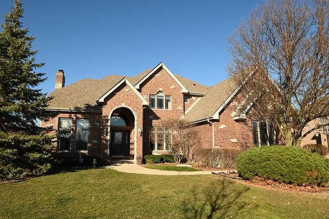 8720 W 141st Place, Orland Park, IL 60462 (MLS #10932928) :: John Lyons Real Estate